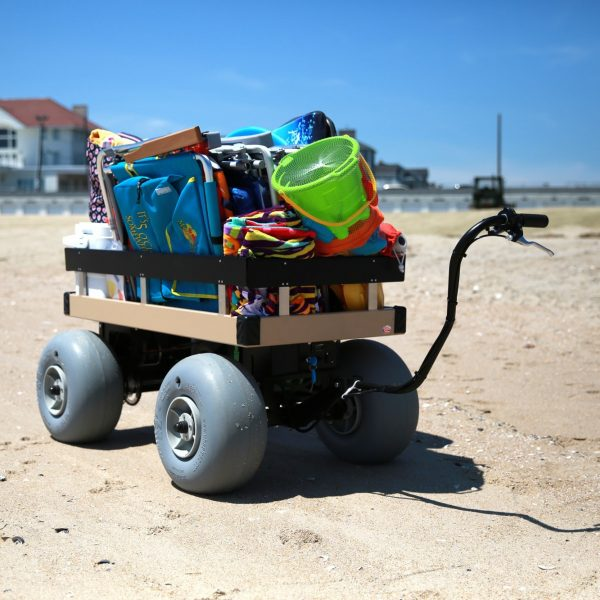 eletric-beach-cart-on-beach-4